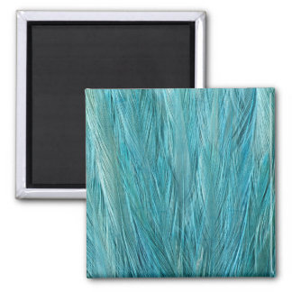 Blue Feather Square Magnet