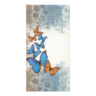 Blue floral butterflies photo cards