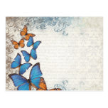 Blue floral butterflies postcard