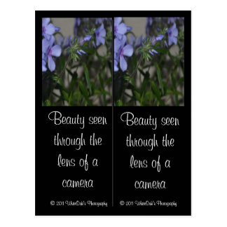 Blue Flower Bookmarks Postcard