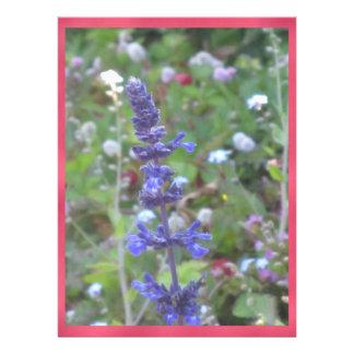 Blue Flower Custom Announcement