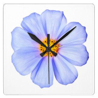 Blue Flower - Customized Cosmos Daisies Template Wall Clocks