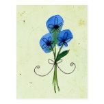 blue flower doodle postcard