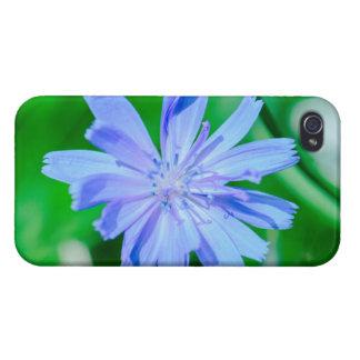 Blue flower macro iPhone 4/4S case