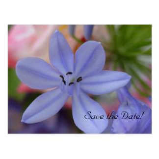 Blue flower Save the Date Postcard