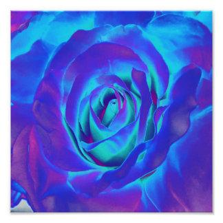Blue Flowers Blooming Bulb Designs Photo Art