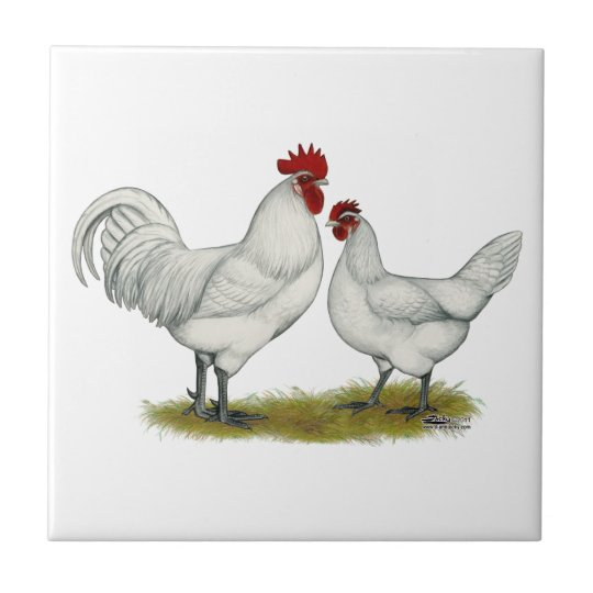 Blue Foot Chickens Small Square Tile