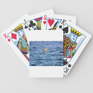 Blue footed boobie flying Galapagos Islands Playing Cards