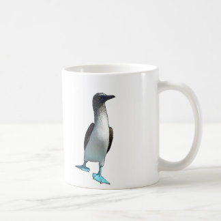 Blue Footed Boobies Basic White Mug