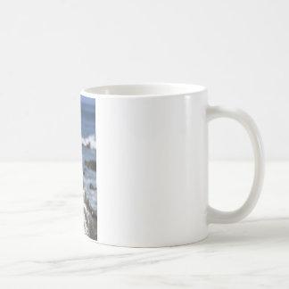 Blue footed Boobies Galapagos Islands Basic White Mug