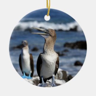 Blue footed Boobies Galapagos Islands Round Ceramic Decoration