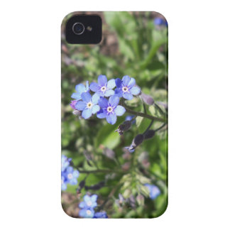 Blue Forget Me Not iPhone 4 Cover