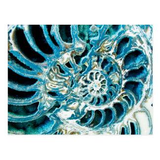 Blue Fossil Postcard