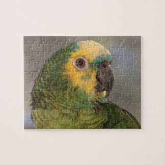 Blue-fronted amazon parrot. jigsaw puzzle