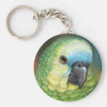 Blue fronted amazon parrot realistic painting