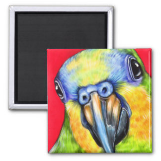 Blue Fronted Amazon Parrot Square Magnet