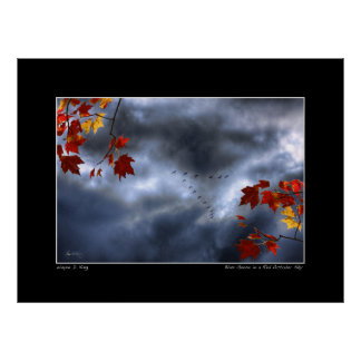 Blue Geese in a Red October Sky Print