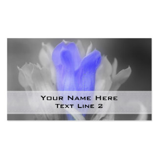 Blue Gentian Flower In Black And White Pack Of Standard Business Cards