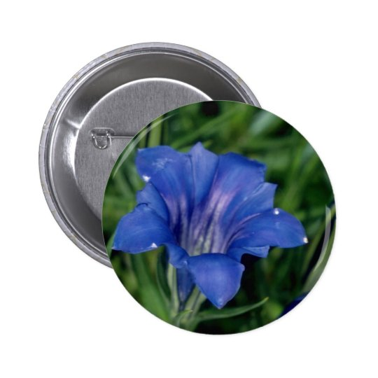 Blue Gentian flowers 6 Cm Round Badge
