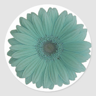 blue gerber daisy round stickers