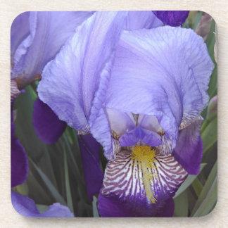 Blue German Irises Coaster