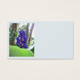 Blue Ginger Business Card