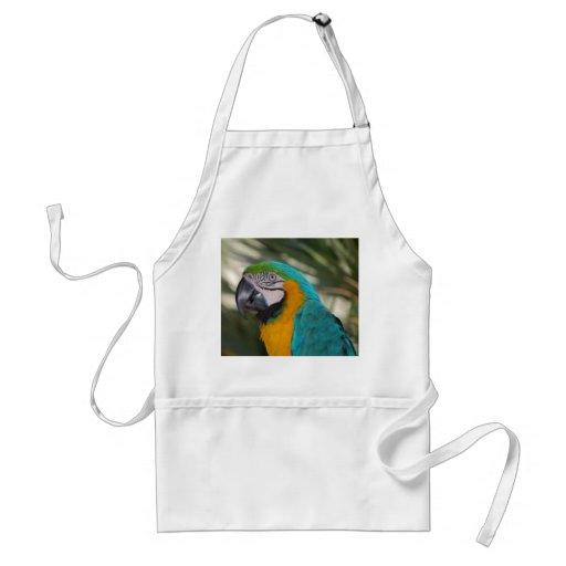 Blue & Gold Macaw Apron