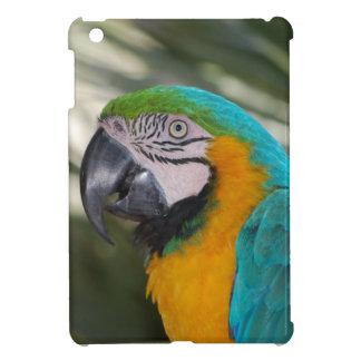Blue & Gold Macaw iPad Mini Case