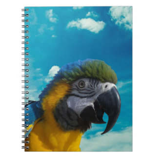 Blue & Gold Macaw Notebook - Many Colors