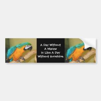 Blue Gold Macaw Parrot Cute Bumper Sticker Car Bumper Sticker