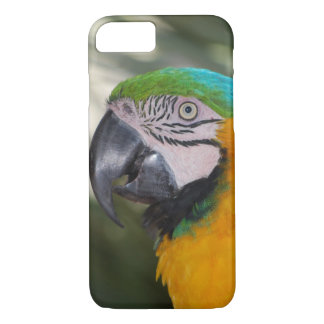 Blue & Gold Macaw Parrot iPhone 7 case