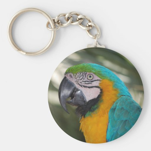 Blue & Gold Macaw Parrot Keychain