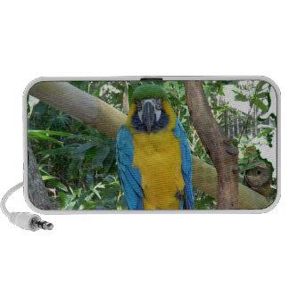 Blue Gold Macaw Travel Speaker