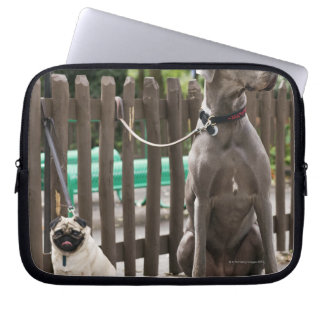 Blue Great Dane and pug dogs on leashes Laptop Sleeve