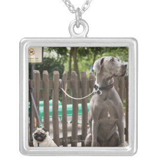 Blue Great Dane and pug dogs on leashes Silver Plated Necklace