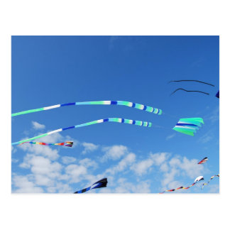 Blue Green Long Tail Kite Postcard