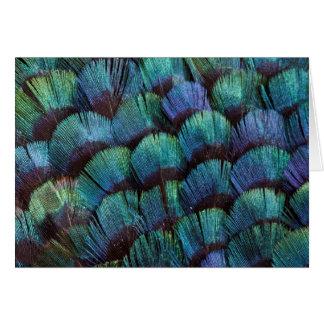 Blue-green pheasant feather design card