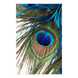 Blue Green Purple Exotic Peacock Feather Stationery