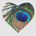 Blue Green Purple Exotic Peacock Feather Heart Stickers