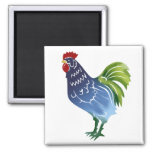 Blue & Green Watercolor Rooster Refrigerator Magnets