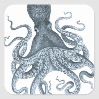 Blue Grey Vintage Octopus Illustration Square Stickers