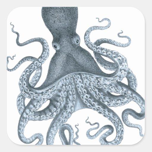 Blue Grey Vintage Octopus Illustration Square Stickers