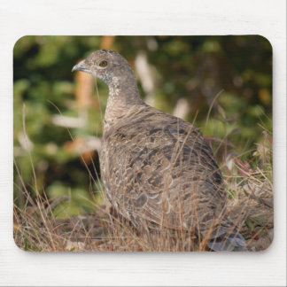 Blue Grouse Mousepads