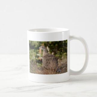 Blue Grouse Coffee Mug