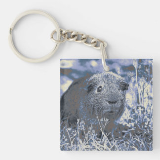 blue guinea pig Double-Sided square acrylic key ring