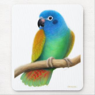 Blue Headed Pionus Parrot Mousepad