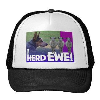 BLUE HEELER I HERD EWE (I HEARD YOU) TRUCKER HAT