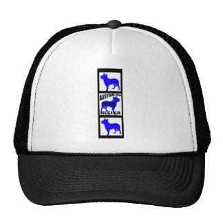 Blue Heeler Movie Film Strip Cap
