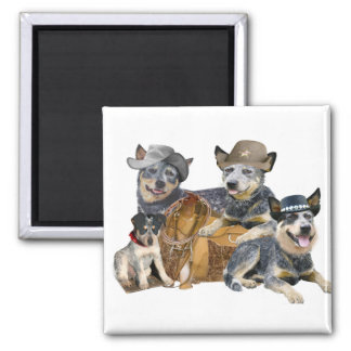 Blue Heeler's Go Western Magnets