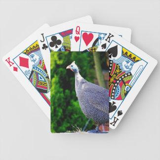 Blue Helmeted Guinea Fowl standing in the sun Poker Deck